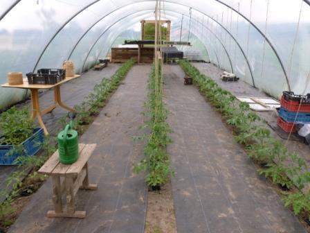 Sinds een jaar staat er een tunnelkas voor het kweken van tomaten en het opkweken van gewassen die later op het land gezet worden. Tot ver in de winter is ...
